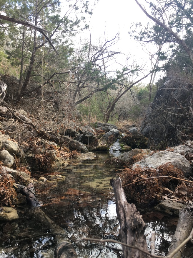 A small creek in Pedernales Falls State Park
